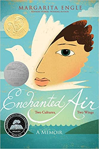 Enchanted Air Book Review