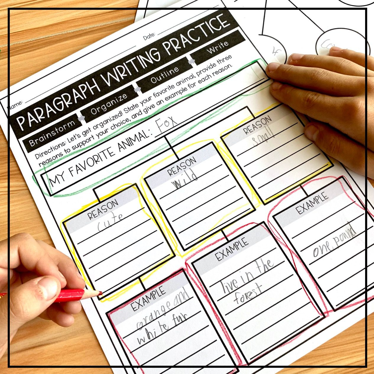 Color-Coded Paragraph Graphic Organizer